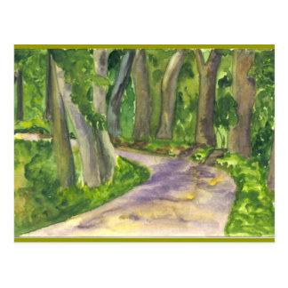Bosque de Lanscape Postal
