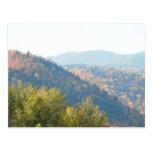 Bosque de las montañas del otoño del Adirondacks d Postales