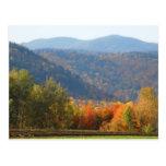 Bosque de las montañas del otoño del Adirondacks d Postal