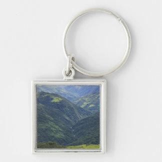 Bosque de las tierras de labrantío y de Himalaya e Llaveros