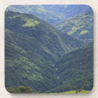 Bosque de las tierras de labrantío y de Himalaya e Posavasos De Bebidas