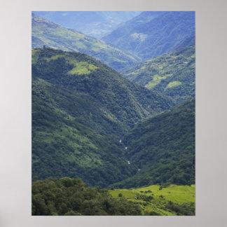 Bosque de las tierras de labrantío y de Himalaya e Póster