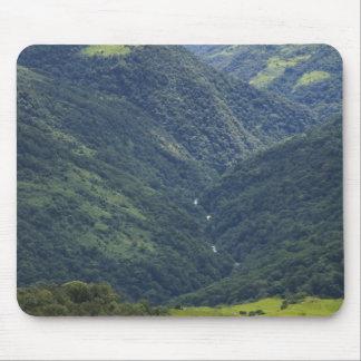 Bosque de las tierras de labrantío y de Himalaya e Alfombrillas De Ratones