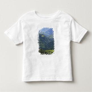 Bosque de las tierras de labrantío y de Himalaya T Shirt