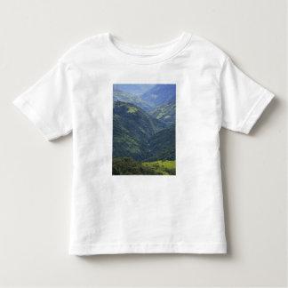 Bosque de las tierras de labrantío y de Himalaya Remeras