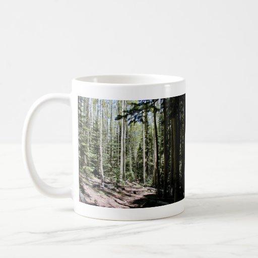 Bosque de los árboles del álamo temblón taza