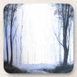 bosque de niebla brumoso posavasos