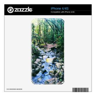 Bosque de Nisene iPhone 4 Skin
