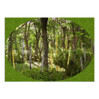 Bosque de Oboe Posters