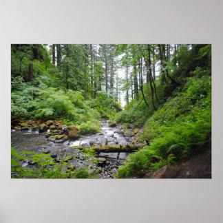 Bosque de Oregon Póster