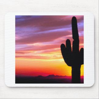 Bosque de Tonto del Saguaro de la puesta del sol Tapetes De Ratón