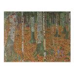 Bosque del abedul de Gustavo Klimt, arte Nouveau Tarjetas Postales