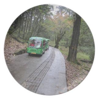bosque del autobús platos para fiestas
