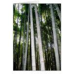 Bosque del bambú de Arashiya Tarjeta Pequeña