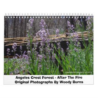 Bosque del escudo de Ángeles - después del fuego Calendario De Pared