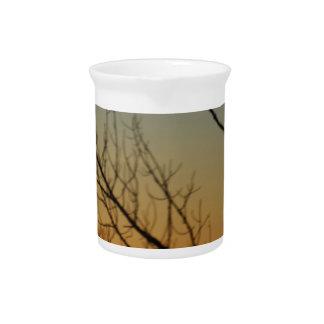 Bosque del escudo de Sun Jarra Para Bebida