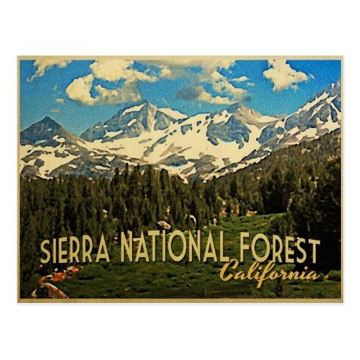 Bosque del Estado California de Sierra Postales