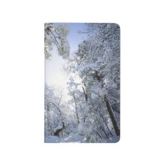 Bosque del Estado de los E.E.U.U., California, Cle Cuadernos Grapados
