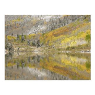 Bosque del Estado de los E.E.U.U., Colorado, el rí Postal