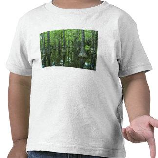 Bosque del Estado de los E.E.U.U., la Florida, Camisetas
