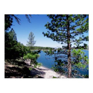Bosque del Estado de Tahoe - California Postal