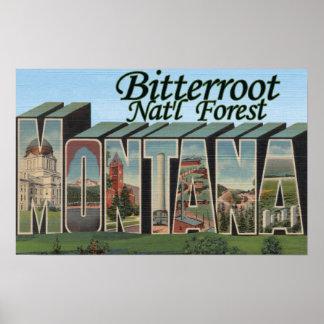 Bosque del Estado del Bitterroot, Montana Póster