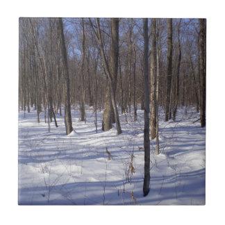 Bosque del invierno azulejo cuadrado pequeño