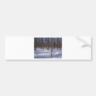 Bosque del invierno etiqueta de parachoque