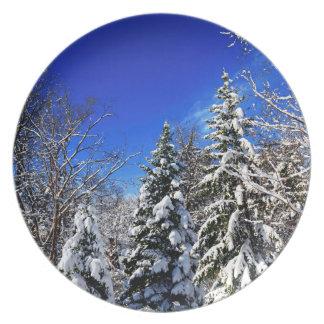 Bosque del invierno plato de cena