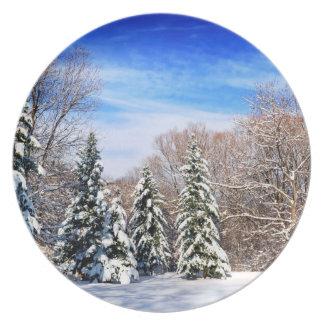 Bosque del invierno platos