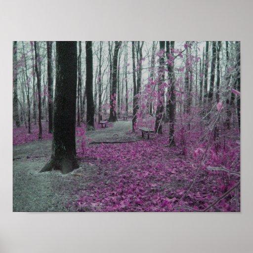 Bosque del invierno póster