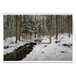 Bosque del invierno tarjetón