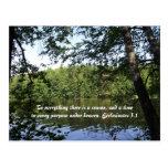 Bosque del lago Ecclesiastes de la estación Tarjetas Postales