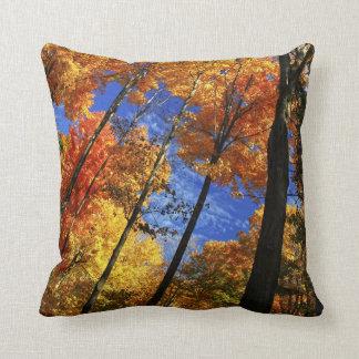 Bosque del otoño cojines