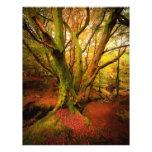 Bosque del otoño membrete