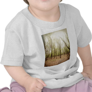 bosque del otoño camisetas