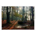 Bosque del otoño tarjeta de felicitación