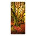 Bosque del otoño tarjetas publicitarias
