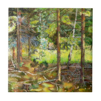 Bosque del pino azulejo cuadrado pequeño