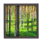 Bosque del pino caja de regalo de calidad
