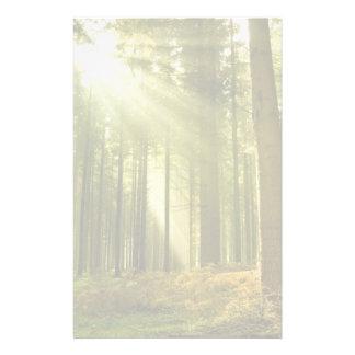 Bosque del pino con el sol que brilla papelería personalizada