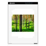 Bosque del pino iPad 2 calcomanías