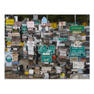 Bosque del poste de muestra del lago Watson Tarjetas Postales