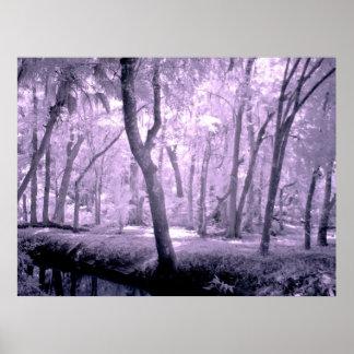 Bosque del samurai póster