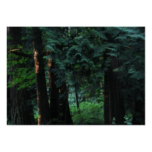 Bosque del terciopelo tarjeta de negocio