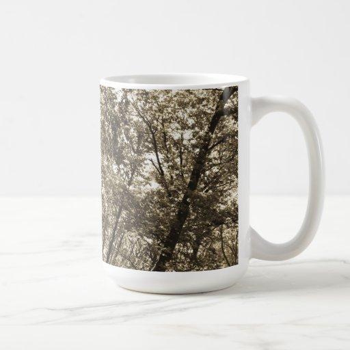 Bosque del verano taza de café