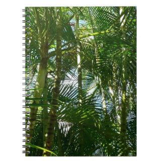 Bosque del verde tropical de las palmeras libreta