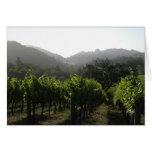 Bosque del viñedo de la mañana felicitacion