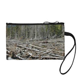 Bosque desnudo con los árboles caidos en la ladera
