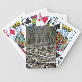 Bosque desnudo con los árboles caidos en la ladera baraja